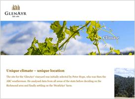 Glenayr wines web